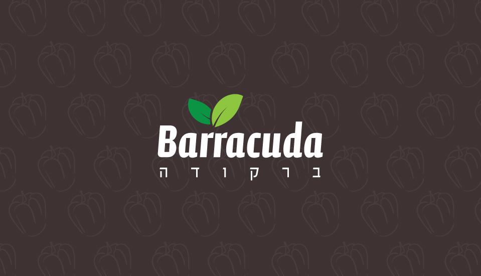 עיצוב לוגו לאפליקציה barracuda